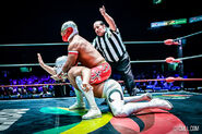 CMLL Domingos Arena Mexico (January 26, 2020) 14