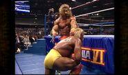 Hogan vs. Warrior 14