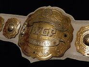 IWGP Intercontinental Championship2