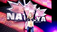WWE World Tour 2013 - Dublin.18