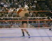1.16.88 WWF Superstars.00005