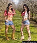 Bella Twins.16