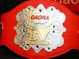 AJPW Gaora TV Championship