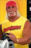 The hulkster 2