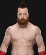 WWESheamus