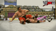WWE 2K14 Screenshot.40