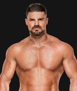 WWEBobbyRoode