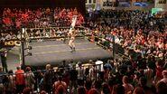 WrestleMania 33 Axxess - Day 3.23