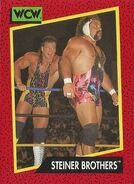 1991 WCW (Impel) Steiner Brothers 111