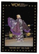 1991 WCW Collectible Trading Cards (Championship Marketing) Ric Flair 35
