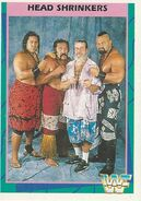 1995 WWF Wrestling Trading Cards (Merlin) Head Shrinkers 38