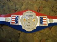 NWA National Champion (old) (2)