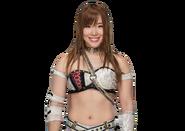 Kairi Sane profile