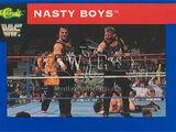 1991 WWF Classic Superstars Cards Nasty Boys (No.28)