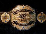 NWA TSW Bull Of The Woods Championship