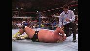SummerSlam 1990.00048