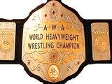 Zero1 World Heavyweight Championship