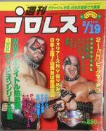 Weekly Pro Wrestling 80