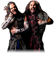 The Broken Hardys ROH Tag Team Championship