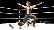WWE World Tour 2013 - Belfast.12