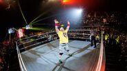 WWE World Tour 2014 - London.16
