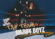 2001 WWF WrestleMania (Fleer) The Hardy Boyz 72