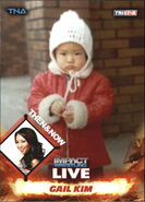 2013 TNA Impact Wrestling Live Trading Cards (Tristar) Gail Kim 89