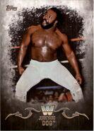 2016 Topps WWE Undisputed Wrestling Cards Junkyard Dog 66
