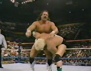 1.9.88 WWF Superstars.00009