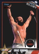 2013 TNA Impact Glory Wrestling Cards (Tristar) Eric Young 35