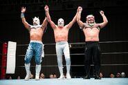 Estrella Executive Committee-Stardom-Tokyo Gurentai Produce Lucha Libre Estrella Fiesta 1