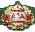 AAA cruiserweight
