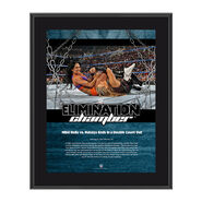Nikki Bella & Natalya Elimination Chamber 2017 10 x 13 Commemorative Photo Plaque