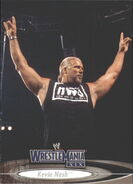 2003 WWE WrestleMania XIX (Fleer) Kevin Nash 42