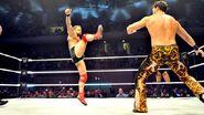 WWE WrestleMania Revenge Tour 2014 - Liège.14