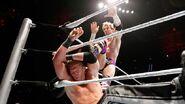 WrestleMania Revenge Tour 2013 - Rotterdam.4