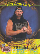 2002 WWE Absolute Divas (Fleer) Bradshaw 61