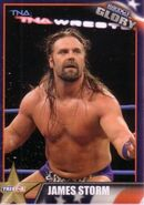 2013 TNA Impact Glory Wrestling Cards (Tristar) James Storm 15