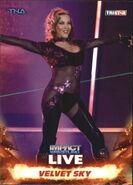 2013 TNA Impact Wrestling Live Trading Cards (Tristar) Velvet Sky 34