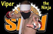 Viper the Ninja