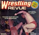 Ric Flair/Magazine covers