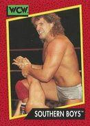 1991 WCW (Impel) Southern Boys 131