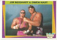 1995 WWF Wrestling Trading Cards (Merlin) Jim Neidhart & Owen Hart 133