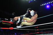 CMLL Martes Arena Mexico (January 15, 2019) 20