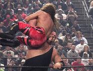 Royal Rumble 2004.25