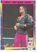 1995 WWF Wrestling Trading Cards (Merlin) Bret Hart 125