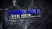 Stone Cold Steve Austin The Bottom Line 1