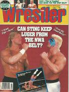 The Wrestler - February 1990
