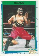 1995 WWF Wrestling Trading Cards (Merlin) Kwang 83