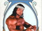 2008 WWE Heritage IV Trading Cards (Topps) Superfly Jimmy Snuka (No.82)